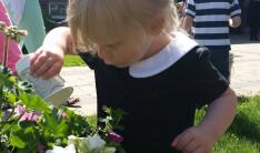 sunday school planting