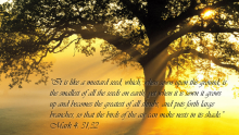 Third Sunday after Pentecost - June 13